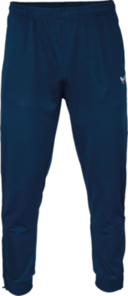 Pánské tepláky VICTOR 2018 TA Pants Team 3938 blue
